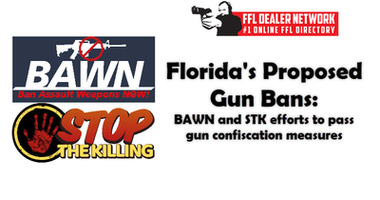Florida's Proposed Gun Bans