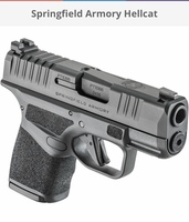 The Springfield Armory Hellcat—In Review