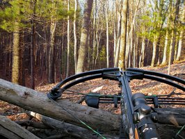7 Crossbow Safety Tips